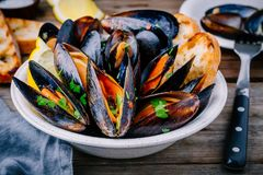 Delicious seafood mussels with with sauce and parsley.  Lemon and baguette . Clams in the shells. Royalty Free Stock Image