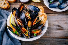 Delicious seafood mussels with with sauce and parsley.  Lemon and baguette . Clams in the shells. Stock Photo
