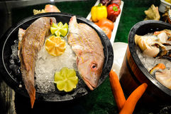 Delicious seafood platters stock image