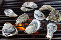 Delicious seafood - raw oyster Royalty Free Stock Image