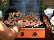 Delicious selection of meat bbq on grill Royalty Free Stock Images