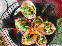 Delicious shell or clams mussels on hot fire coal grill Stock Image