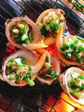 Delicious shell or clams mussels on hot fire coal grill Royalty Free Stock Photo