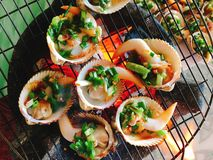 Delicious shell or clams mussels on hot fire coal grill Royalty Free Stock Images
