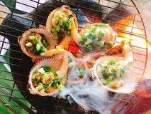 Delicious shell or clams mussels on hot fire coal grill Royalty Free Stock Image