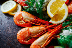 Delicious shrimp and crab meat with herbs and lemon Stock Photography