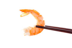 Delicious shrimp eating. Stock Photos