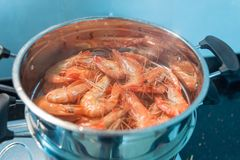 Delicious shrimp steamed with beer stock photo