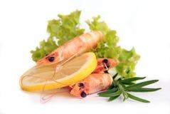 Delicious shrimps Stock Photos