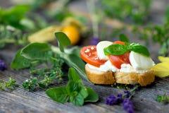 Delicious slice of bread with buffalo mozzarella, tomatoes and fresh basil Stock Image