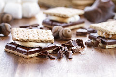 Delicious Smores Royalty Free Stock Photo
