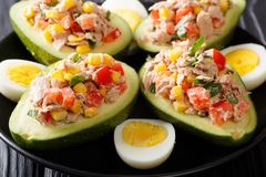 Delicious snack of avocado stuffed with tuna salad closeup. hori Royalty Free Stock Photos