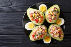 Delicious snack of avocado stuffed with tuna salad closeup. hori Royalty Free Stock Photography