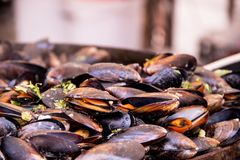 Delicious snack for gourmands with mussels in a large frying pan, street food. Seafood. Mussels in a large frying pan. Street food. Clams in the shells stock photography