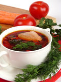 A delicious soup in meat broth Royalty Free Stock Photo