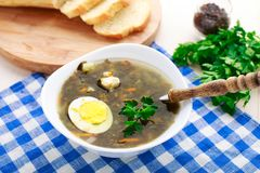 Delicious soup with sorrel. Delicious sorrel soup with egg on white bowl Stock Images