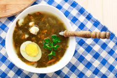 Delicious soup with sorrel. Delicious sorrel soup with egg on white bowl Stock Photography