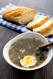 Delicious soup with sorrel. Delicious sorrel soup with egg on white bowl Stock Image