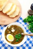 Delicious soup with sorrel. Delicious sorrel soup with egg on white bowl Royalty Free Stock Photography
