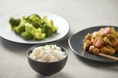 Delicious soy sauce chicken with rice - asian food style.  royalty free stock photography