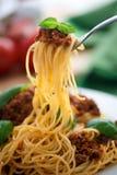 Delicious spaghetti bolognese Stock Image