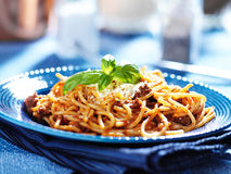 Delicious spaghetti in bolognese sauce. With basil garnish Royalty Free Stock Images