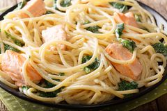 Delicious spaghetti pasta with salmon and spinach closeup on a p. Late on the table. horizontal Royalty Free Stock Photography