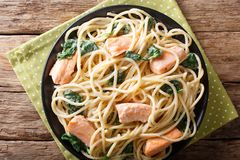 Delicious spaghetti pasta with salmon and spinach closeup on a p. Late on the table. horizontal top view from above Royalty Free Stock Photos