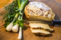 Delicious spicy cheese Stock Photos