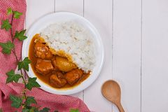 Delicious and spicy Chicken curry roast from Indian cuisine. Delicious and spicy Chicken curry roast from Indian cuisine royalty free stock photography