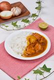 Delicious and spicy Chicken curry roast from Indian cuisine. Delicious and spicy Chicken curry roast from Indian cuisine royalty free stock image