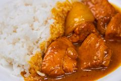 Delicious and spicy Chicken curry roast from Indian cuisine.  stock image