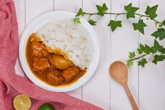 Delicious and spicy Chicken curry roast from Indian cuisine.  stock photos