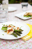 Delicious spring appetizer Royalty Free Stock Photography