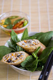 Delicious spring roll appetizer Royalty Free Stock Image