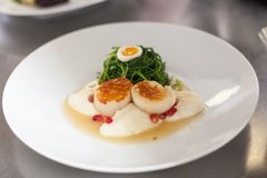 Delicious starter of stuffed savoury eggs scallops Royalty Free Stock Images