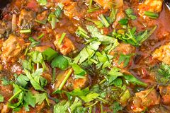 Delicious stewed lamb fillet with tomatoes. Royalty Free Stock Images