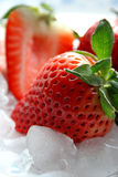 Delicious Strawberries. Fresh strawberries on crushed ice Royalty Free Stock Photos