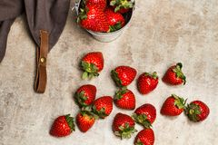 Delicious red strawberries in a galvanized bucket stock photography