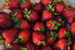 Delicious strawberries. Royalty Free Stock Photography