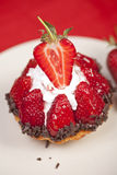 Delicious strawberry fruit tart Royalty Free Stock Image