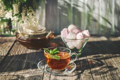 Delicious strawberry green mint tea in a transparent glass teapot and Cup in the summer, on a rustic wooden table with marshmallow Royalty Free Stock Images