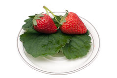 Delicious strawberry Stock Photography
