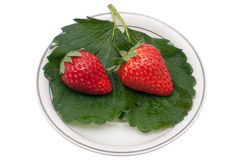 Delicious strawberry Stock Photo