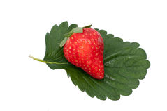 Delicious strawberry Royalty Free Stock Photo