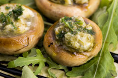 Delicious stuffed mushrooms with cheese and pesto. Appetizer Royalty Free Stock Photos