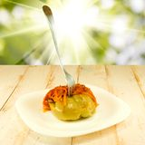 Delicious stuffed peppers against the sun Royalty Free Stock Photography