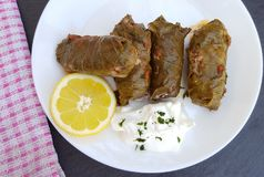 Delicious stuffed vine leaves with rice and meat Royalty Free Stock Photos