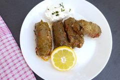 Delicious stuffed vine leaves with rice and meat Royalty Free Stock Images