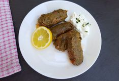 Delicious stuffed vine leaves with rice and meat Royalty Free Stock Photo